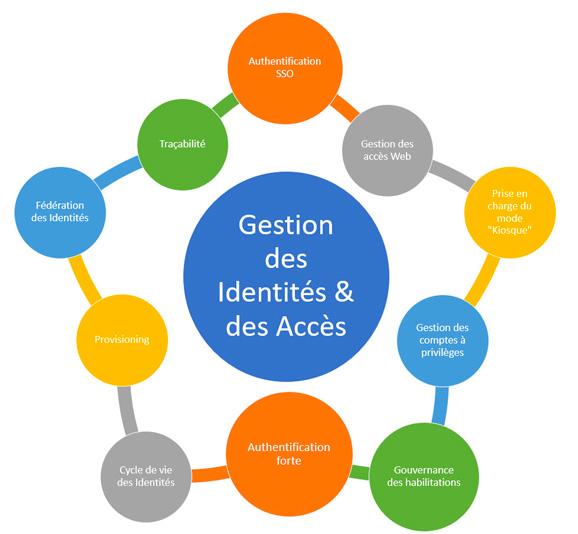 La gestion IAM regroupe différents aspects fonctionnels dont la couverture par les différentes solutions du marché s'avère spécifique en fonction du rôle au sein du SIH: éditeur applicatif, intégrateur d'interopérabilité, fournisseur d'accès réseau, etc.