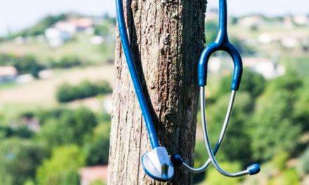 Santé & Territoires: les approches des éditeurs